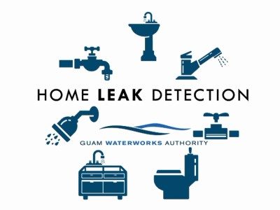 home-leak-detection
